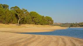 maquisvegetationaong stranden av Montargil sjön, Portalegre, Portugal Arkivfoton