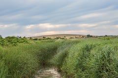 marços de Rainham, paisagem de Essex Fotos de Stock Royalty Free