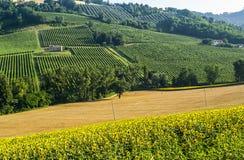 Marços (Italia), paisagem Imagens de Stock