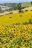 Marços (Italia), paisagem Fotografia de Stock