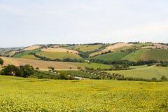 Marços (Italy) - ajardine no verão Foto de Stock