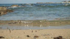 Maré alta com respingo rippling azul excitante da água na praia da areia de Chipre As ondas pequenas criam a espuma e as bolhas video estoque