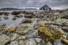 Maré baixa, algas e rochas Fotografia de Stock Royalty Free