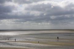 Maré baixa da Holanda do mar de Wadden Fotos de Stock