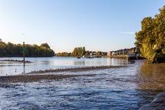 Maré baixa em Tamisa, Chiswick fotografia de stock royalty free