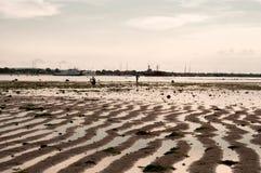 Maré baixa na praia Fotos de Stock