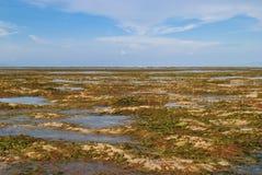 Maré baixa na praia Bali de Sanur Foto de Stock
