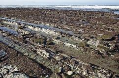 Maré baixa no litoral atlântico do país Basque francês Imagens de Stock Royalty Free