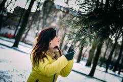 Maré do inverno Foto de Stock