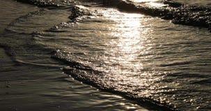 Maré do mar na noite vídeos de arquivo