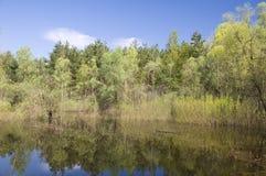 Maré no rio de Dnieper foto de stock