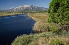 Marécage avec la gamme de montagne, Sardaigne Photos stock