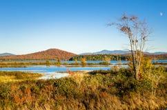 Marécage avec les collines boisées en ciel bleu de fond et d'espace libre avec la lune Photo stock
