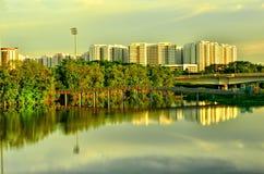 Marécage dans la ville urbaine Singapour Images stock