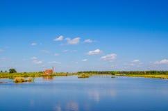marécage sous le ciel bleu Photos libres de droits