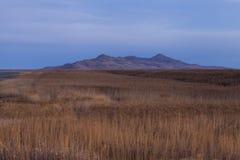 Marécages du Grand Lac Salé Photos libres de droits