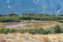 Marécages en parc national du passage d'Arthur Photographie stock