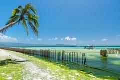 Marée basse à la plage blanche de l'île de Boracay de Philippines Photo libre de droits