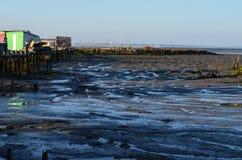 Marée basse au port de pêche artisanal de palaphite de Carrasqueira, estuaire de rivière de Sado, Portugal Image libre de droits
