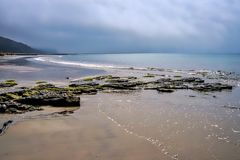 Marée basse chez Charmouth Photo stock