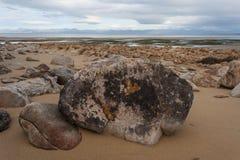 Marée basse chez Sandy Bay en Abel Tasman National Park Photo stock