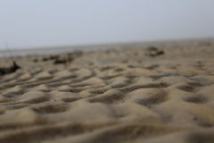 Marée basse en gros plan Photos stock