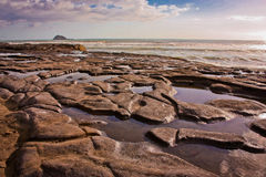 Marée basse sur la plage de Muriwai près d'Auckland, Nouvelle-Zélande Images libres de droits