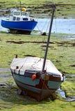 Marée inférieure Photos libres de droits
