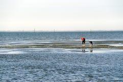 marée inférieure d'enfants de plage Images libres de droits