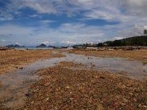 Marée inférieure en mer photos libres de droits