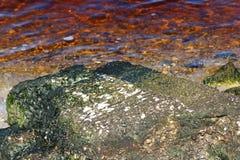 Marée rouge Image libre de droits