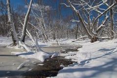 Marés nevado do rio do rum, minnesota fotografia de stock