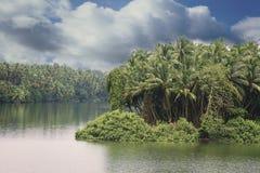 Marés serenos em Kerala Imagens de Stock Royalty Free