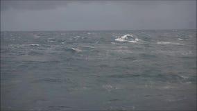 Mar áspero video estoque