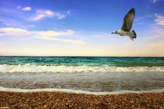 Mar Foto de archivo libre de regalías