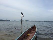 Mar asiático Imagem de Stock Royalty Free
