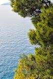 Mar azul e pinheiros verdes na costa adriático na Croácia imagens de stock royalty free