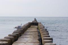 Mar Báltico Imagem de Stock