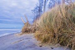 Mar Báltico Fotografía de archivo libre de regalías