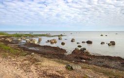 Mar Báltico de pedra Fotos de Stock
