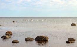 Mar Báltico de pedra Fotografia de Stock Royalty Free