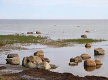 Mar Báltico de pedra Imagens de Stock