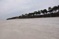 Mar Báltico del otoño de la playa imagen de archivo libre de regalías