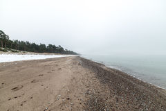 Mar Báltico e manhã nevoenta Foto de Stock