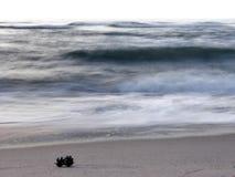 Mar Báltico y conos imagen de archivo