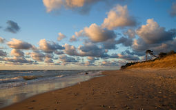 Mar Baltico della sabbia della costa della spiaggia Immagini Stock Libere da Diritti