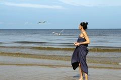 Mar Baltico, gabbiani bianchi d'alimentazione della donna Immagine Stock Libera da Diritti