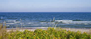 Mar Baltico, Lituania Fotografia Stock Libera da Diritti