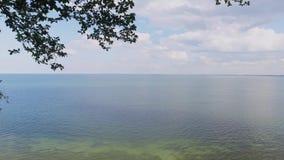Mar Baltico, scogliera video d archivio