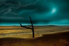 Mar-Bourgas negro   Fotografía de archivo